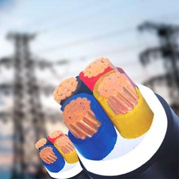 Hình ảnh của Cáp điện lực CVV - 0,6/1kV TTT
